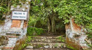 Wisata budaya di bali - Desa Trunyan
